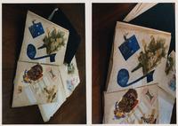 Pages from Helen Krizka's scrapbook. Krizka was a...